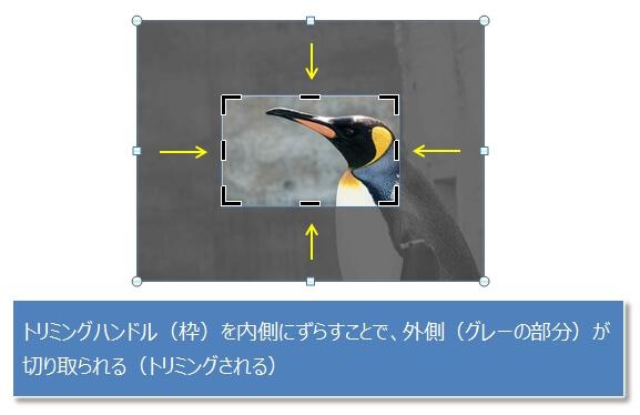 画像を矩形(四角)の形にトリミングする